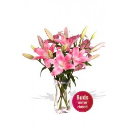 5 Asiatic Lily Bouquet